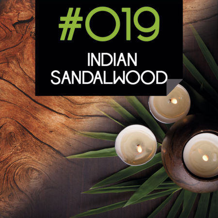 019 Indian Sandalwood