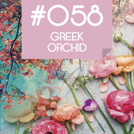 058 Greek Orchid
