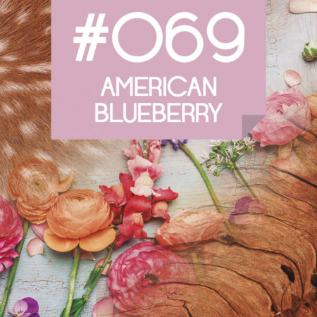 069 American Blueberry