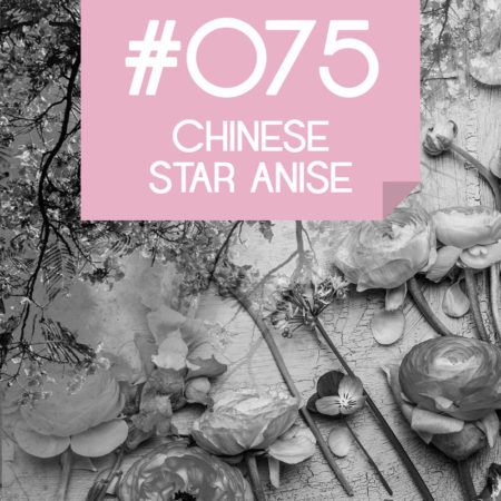 075 Chinese Star Anise