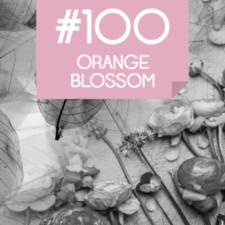 100 Orange Blossom