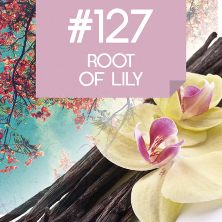 127 Root of lily