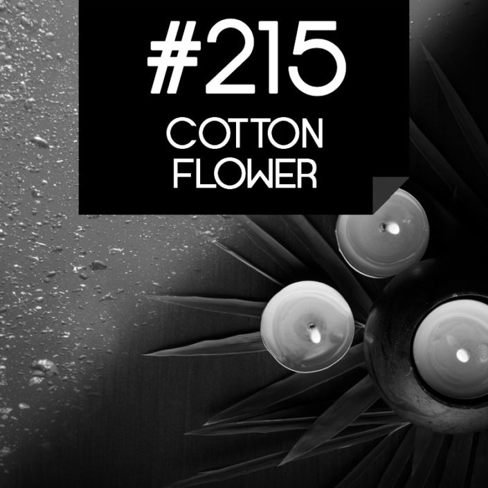 215 Cotton Flower